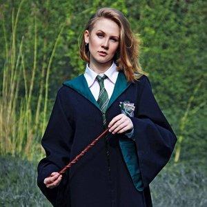 Harry Potter Hogwarts Houses Cloak picture