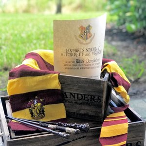 Harry Potter's Gryffindor Gift Set picture