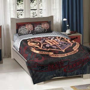 "Harry Potter ""School Motto"" comforter picture"