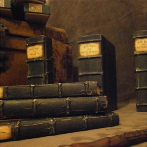 Unique Hogwarts Library Harry Potter Book Set picture